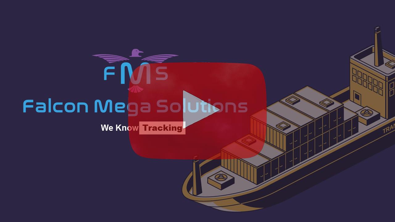 FMS Presentation-YouTube